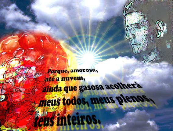 banco de jardim poesia:morte solitária de Wilson Bueno
