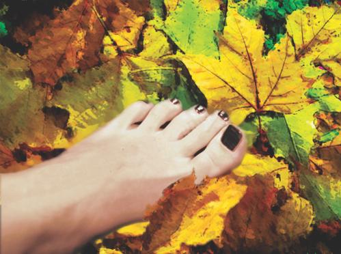 Pés de outono, ilustração de Cleto de Assis