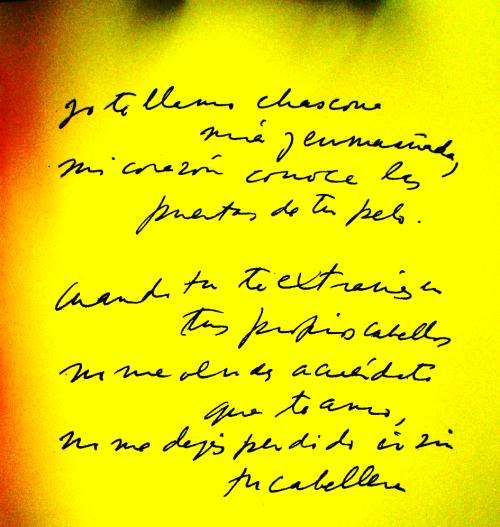 """Fragmento do Soneto XIV, de """"Cem Sonetos de Amor"""", autografado pelo poeta"""