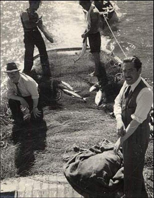 6.Vários homens desembarcam do Winnipeg em Valparaíso, Chile. No dia 3 de setembro de 1939 o barco chega às costas do território chileno. Todos os passageiros viajaram com um único passaporte coletivo. (Foto: Biblioteca Nacional do Chile).