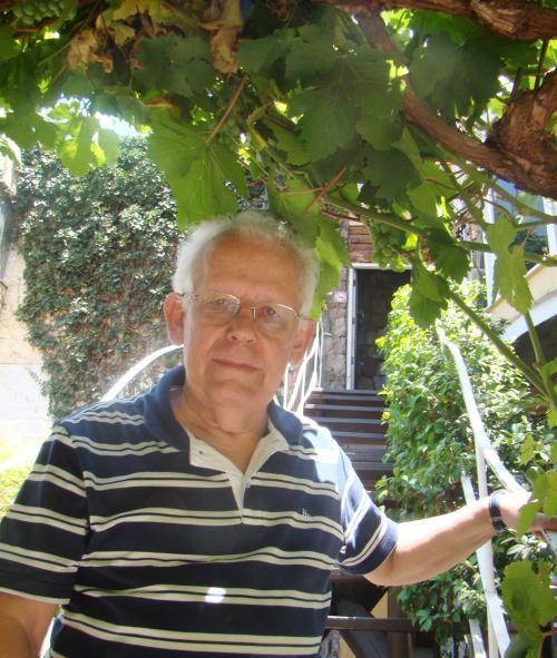 Encontrei-me com Neruda por meio de suas uvas ainda verdes. Alusão ao menino perdido em Parral (Parreiral, em Português) e recuperado na construção das casas, como se fossem brinquedos? (Foto de Teresas Vargas Sierra)